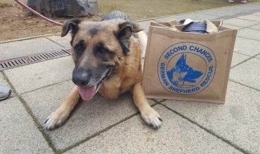 Charity Bag Pack